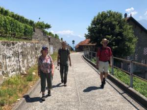 Sur le chemin du Lavaux-Express!