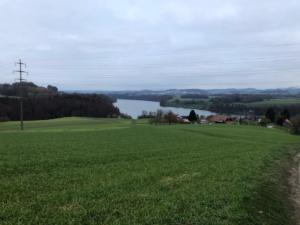 Et retour vers le lac de Schiffenen