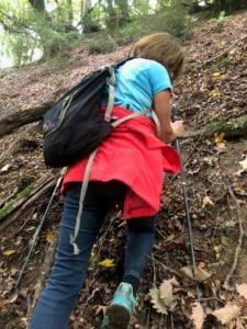 aiguillage, montée corsée dans la forêt La Roseire.