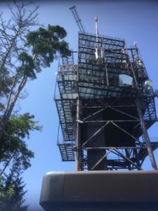 Et voici la tour